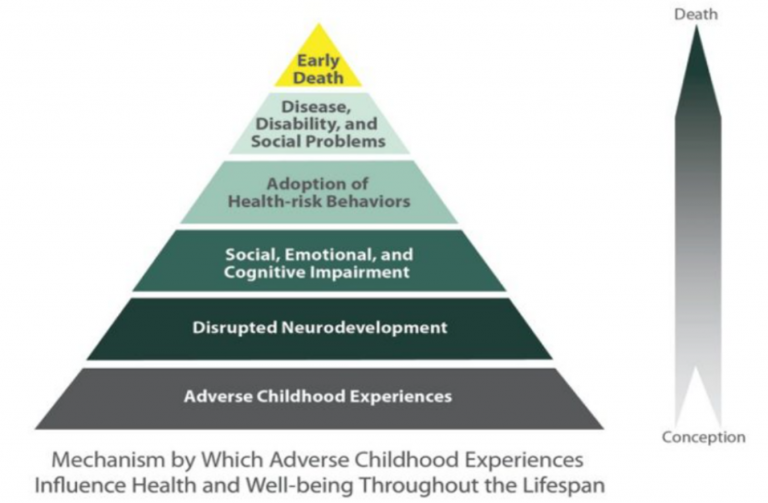 diagram of effects of adverse childhood experiences on kids